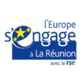 logo Fonds Social Europpéen